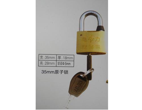 优质35mm原子挂锁,一把钥匙通开锁,电力表箱专用通开挂锁,塑钢防锈电力表箱锁厂家