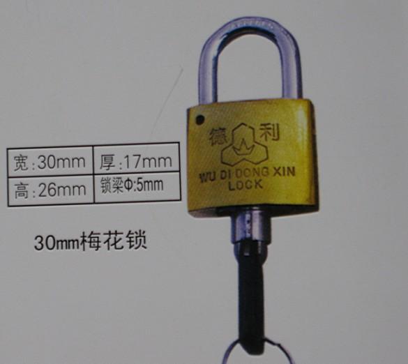 厂家供应优质30mm表箱挂锁,农村改造电力表箱专用通开锁,一把钥匙开多把铜锁